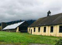 Abandon dairy barn 2