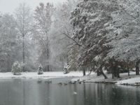 Our Pond Before It Froze