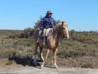 Gaucho in the desert Argentina