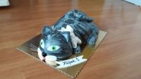 Kočka přeje Filípkovi