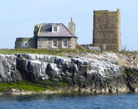 Farne Islands, Northumberland, England