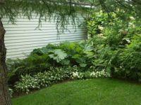 My lost garden 4