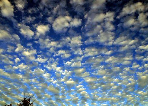 Popcorn Sky