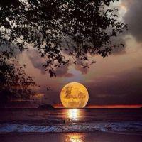 Moon on Water=Ron Boyer