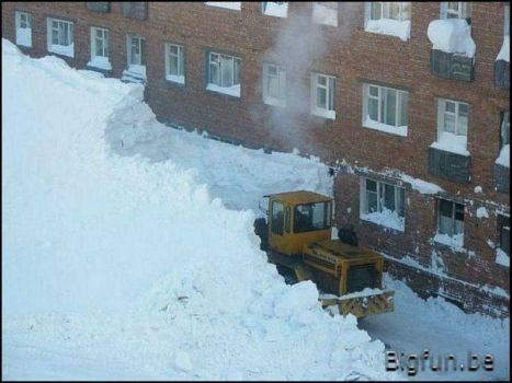 Snow_Shovelling The_Real_Thing