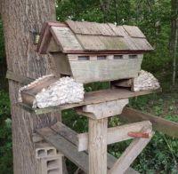 Awesome bird feeder