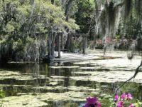 Airlei Gardens pergola
