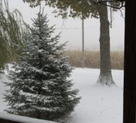 First Snow of Fall 2019