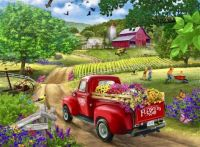 FRIENDLY FARM FLOWERS