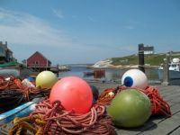 Peggy's Cove - I've Got an Eye on You!