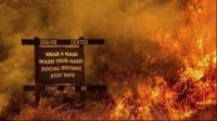 california wildfires surrounding coronavirus protocols sign. 2020 in an image.
