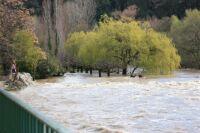 Bize- River in flood 1