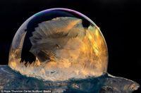 Frosty Snow Globe 8
