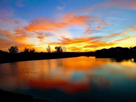 West Florida backyard sunset