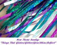 "New Theme Sunday: ""Things That Glisten/Glitter/Glow/Shine/Reflect""   ENJOY THE FUN"