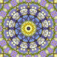 kaleidoscope 319 daisies 2 very large