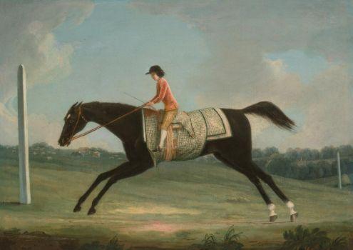 Horseback Rider Vintage Art