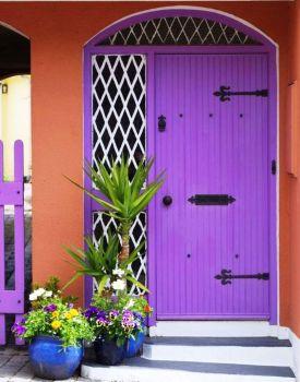 A Purple Welcome
