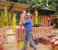 Venezulean Roadside Fruit Vendor 2008