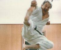 shorin Ryu