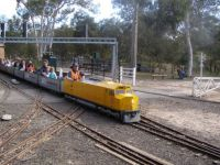 Minature train fun