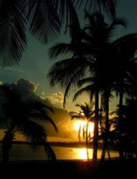 Hawaiian Sunset (Fun-Size)