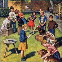 Back Yard Dog Show