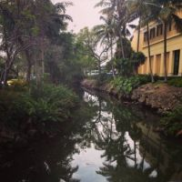 University of Miami Wellness Centre