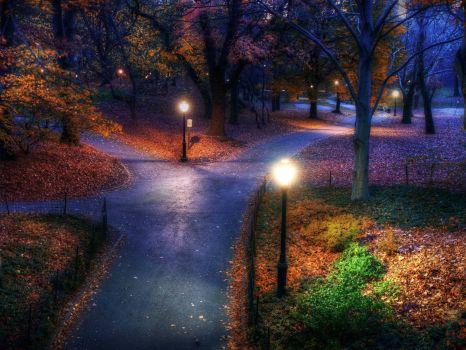 Autumn Nightfall