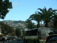 Madeira 2012 januar 035