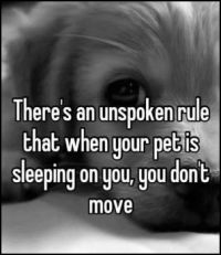 There's an unspoken rule !