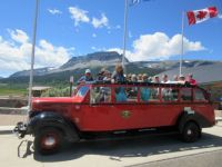Jammer Car - Glacier Nation Park