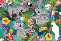 KOALAS AND SLOTHS