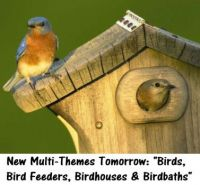 "New Multi-Themes Tomorrow: ""Birds, Bird Feeders, Birdhouses & Birdbaths""   ENJOY"
