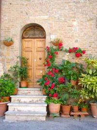 Potted Entrance