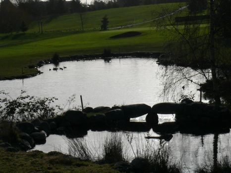 Two ponds