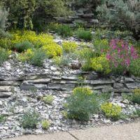 Denver Botanical Gardens 2014