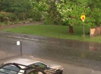 #4 Rain photo