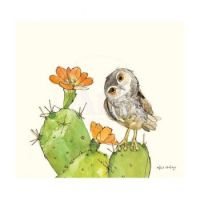 Elf Owl on a Prickly Pear