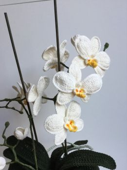 Orchid crochet style