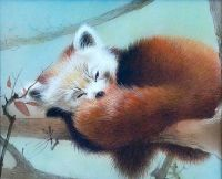 Painting of sleeping red panda