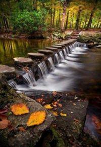 Shimna River, Ireland