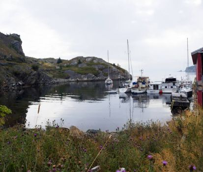 Little Boats in Brigus, NL