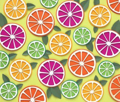 Citrus Slices Paper Art by Sarah Dennis
