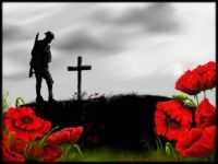 in flanders fields the poppies grow between the crosses row on row