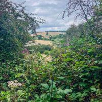 Langley Moor