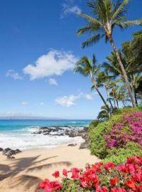 Tropical Beach, Maui, Hawaii, USA