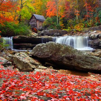 Autumn in West Virginia!!!!!!!!!!