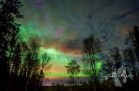 northern lights 2015
