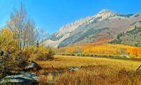North Lake Autumn, Sierra Nevada